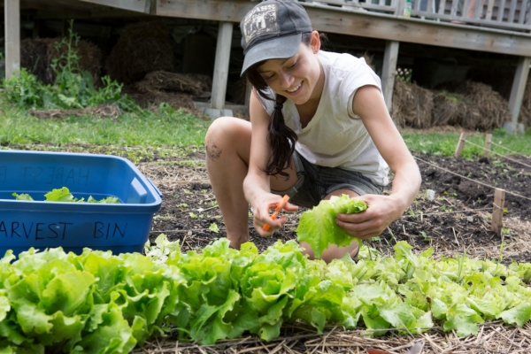Food - Loyola City Farm School
