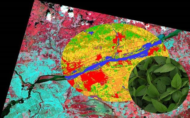 From a Pretty picture, to land cover information, to structural and biophysical information