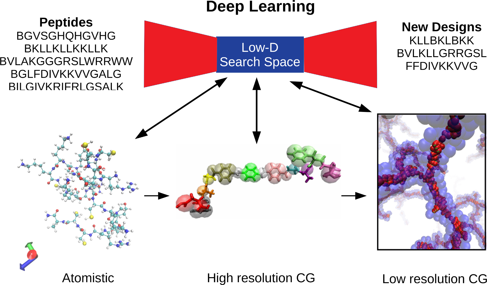 Schematic of deep learning procedure for therapeutic peptide design