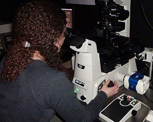 Microscopy and Cellular Imaging