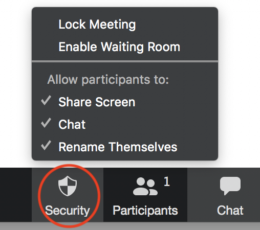 the security menu item is circled and the menu items are displayed, including Lock meeting, enable Waiting Room, Allow Participants to: share screen, chat and Rename Themselves