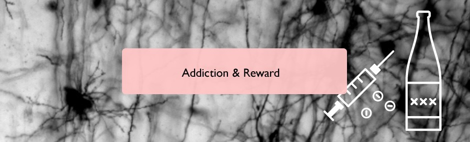 Addiction and reward