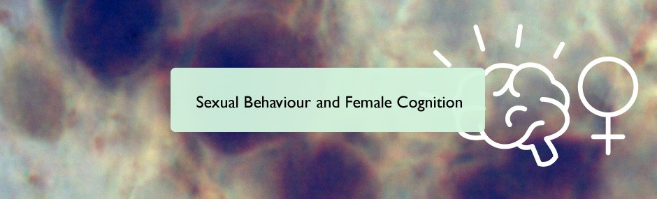 Sexual behaviour and female cognition