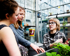 Are you a budding urban agriculturist?