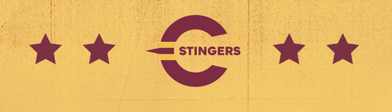 #StingersUnited: a bold new look for Concordia