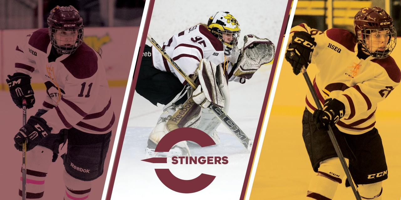 Womens hockey Alumni email banner 20171116 final