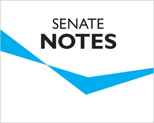 Senate meeting focuses on governance and the academic plan