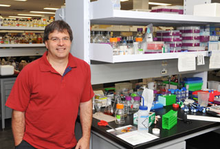 PhytoMetaSyn co-leader Vincent Martin, a professor in the Department of Biology and Canada Research Chair in Microbial Genomics and Engineering.