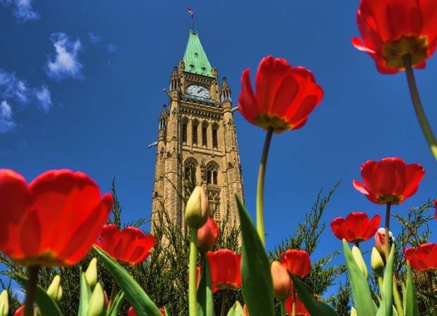 The Peace Tower, Canadian Parliament Building. Photo by beyondhue (flickr creative commons)
