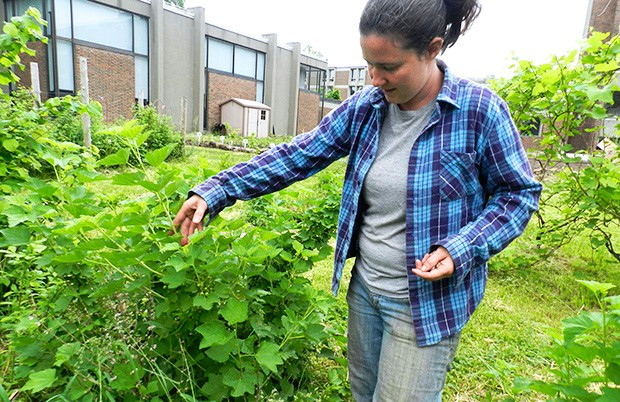 City Farm School co-coordinator Jackie Martin shows off some currants.