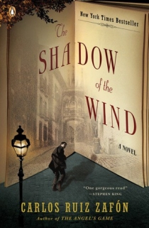 shadow-of-the-wind-310
