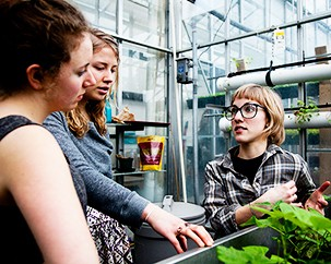 Are you a budding urban agriculturist? Join Concordia's City Farm School