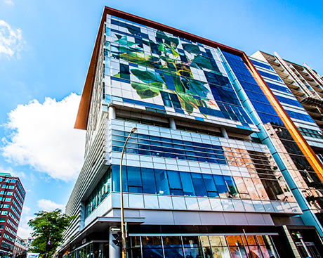 Concordia leads the way in energy efficiency