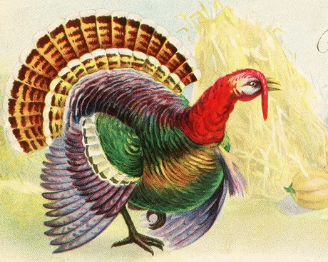 Let's talk turkey. Is Thanksgiving younger than we think?