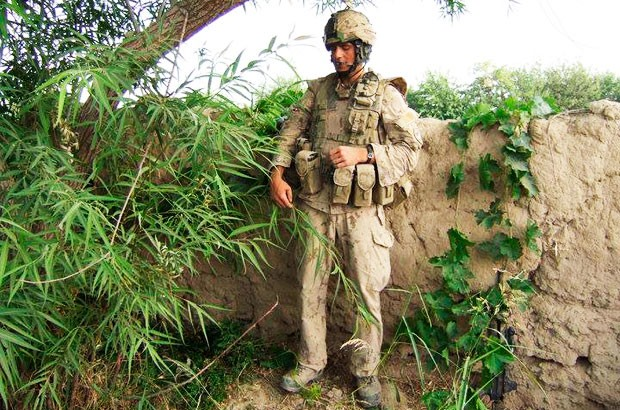 Leger finds shade under a tree while on foot patrol in Kandahar province's Panjwai district.