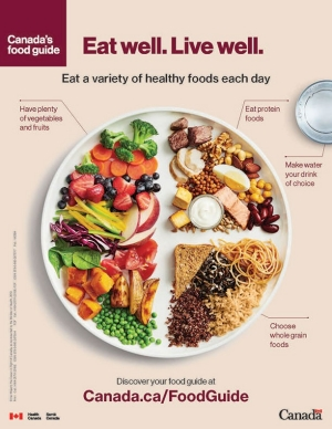 The Canada Food Guide encourages you to eat a variety of healthy foods each day