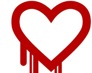 Heartbleed and other cyber threats