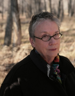 american novelist annie proulx E annie proulx s the half skinned steer annie proulx wikipedia, edna ann proulx (/ p r u / born august 22, 1935) is an american novelist, short story writer.