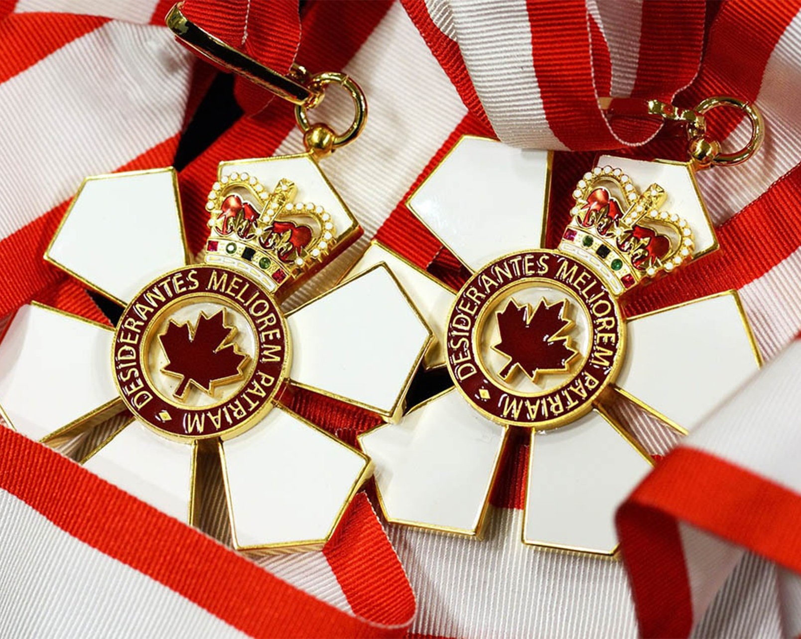 8 Concordians among newest Order of Canada honourees