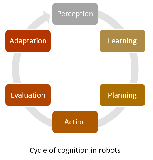 Cycle of cognition in robots