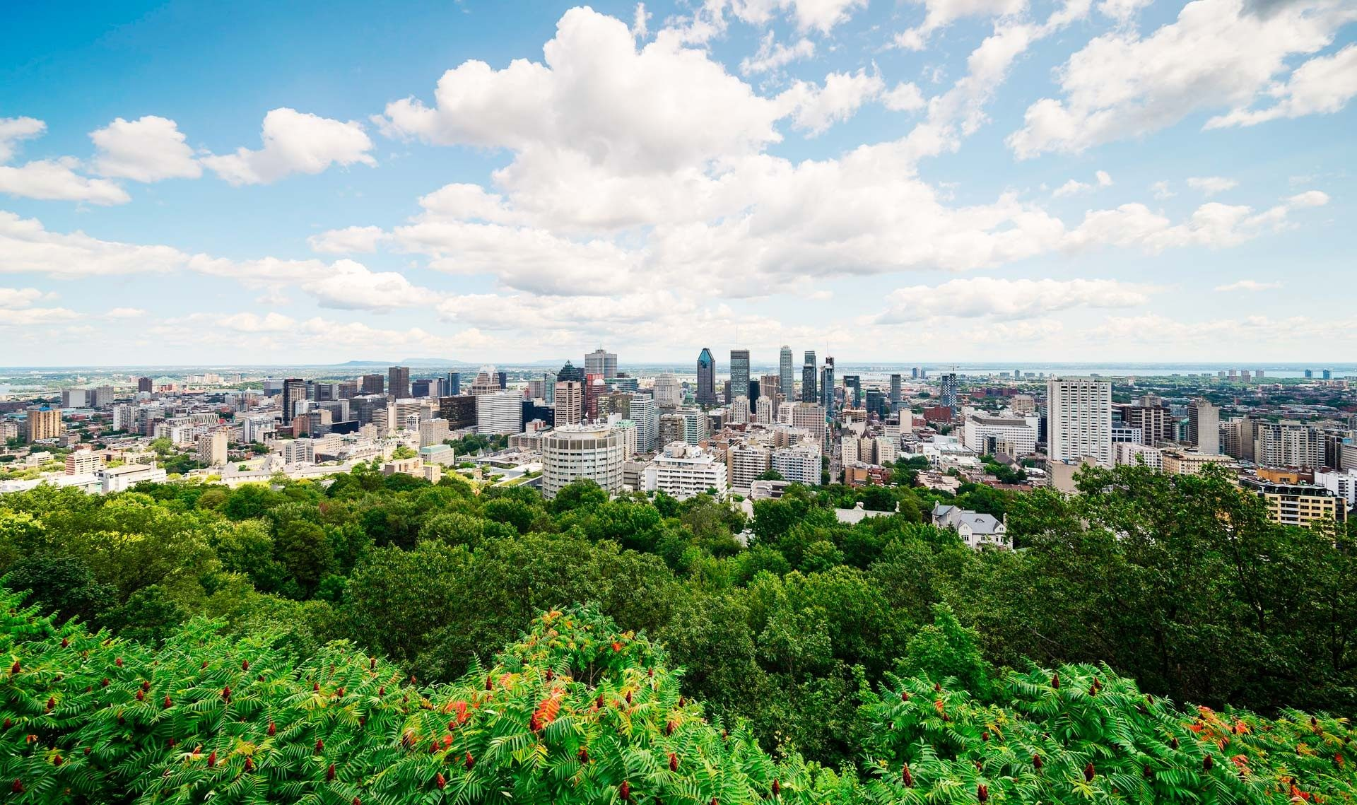 Time Out Ranks Montreal The 6th Best City In The World